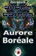 Aurore-Boreale